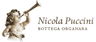Nicola Puccini